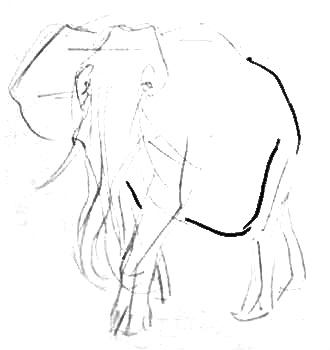 рисуем африканского слона поэтапно