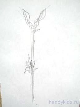 Урок поэтапного рисования ветки дерева