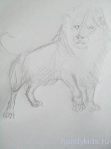 Нарисуем льва