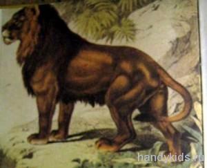 Изображение льва
