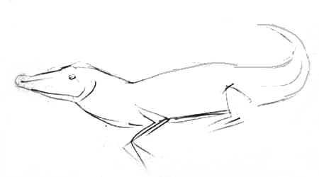 Рисуем крокодила карандашом