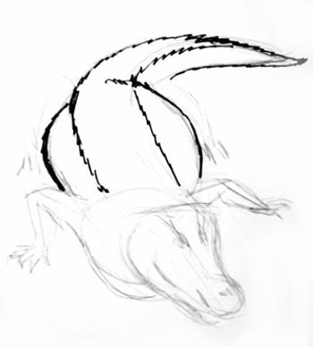 Рисуем ползущего крокодила