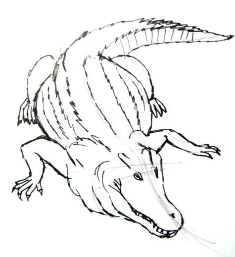 Рисунок Крокодил ползёт