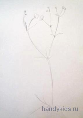 Намечаем стебли и листья