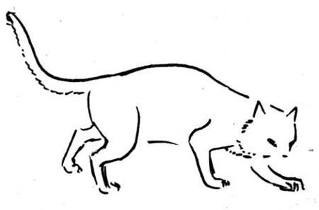 Рисуем котика