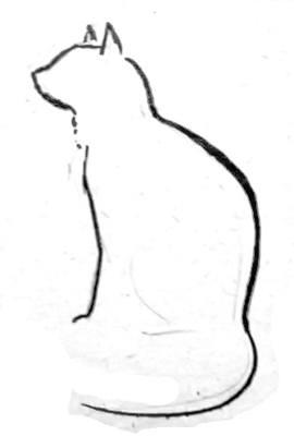 Рисуем кошку 3