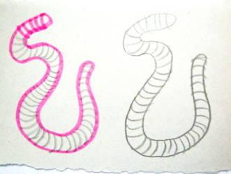 Раскраска червяк