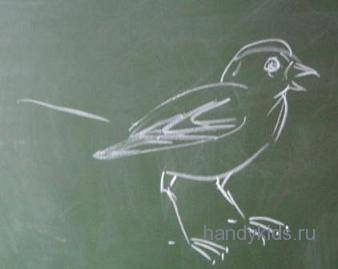 Птичка на земле