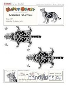 Модель кошки