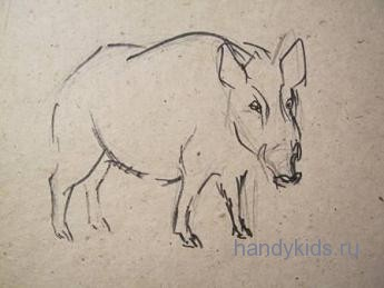 Как рисовать кабана