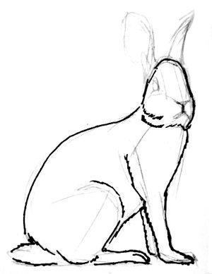 Урок поэтапного рисования зайца