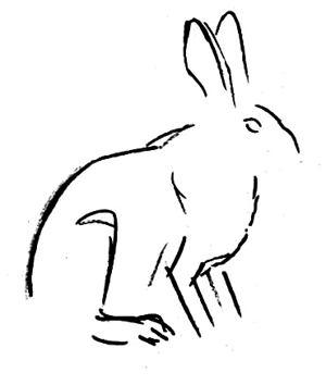 Рисуем зайца поэтапно