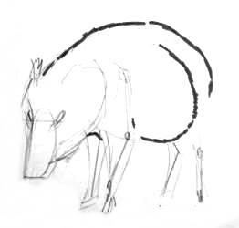 Рисуем кабаниху