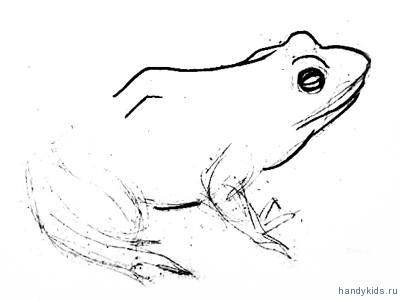 Поэтапный рисунок лягушки
