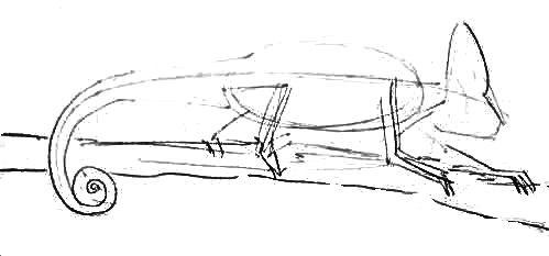 Хамелеон -эскиз карандашом