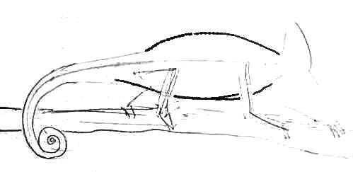 Урок рисования хамелеона
