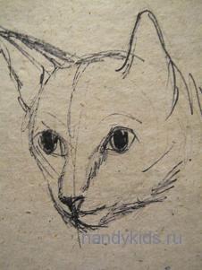 Как нарисовать голову кошки.
