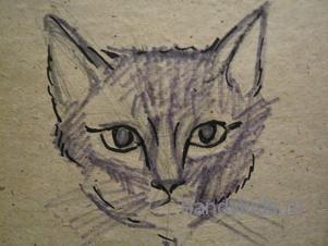Как нарисовать мордочку кошки.