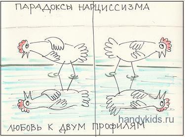 Из жизни курочек