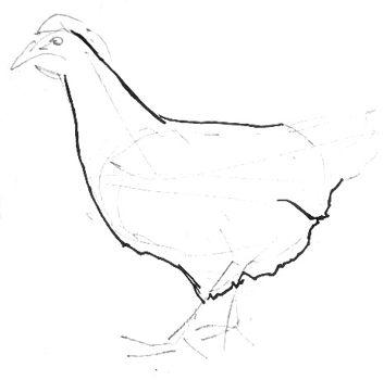 Урок рисования курицы