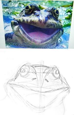 Как нарисовать голову лягушки