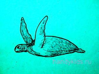 Морская черепаха рисунок 13