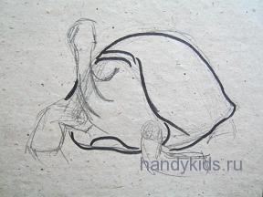 Гигантская черепаха 7