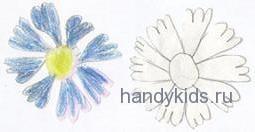 Нарисуем цветок по образцу