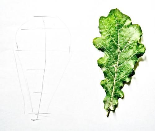 Нарисуем дубовый лист