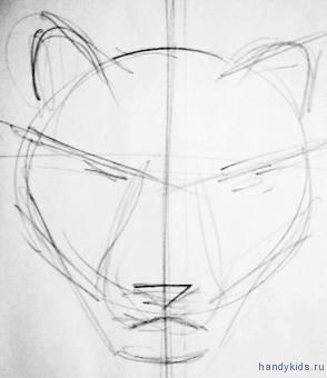 Рисуем голову тигра карандашом