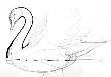 Нарисуем шею лебедя