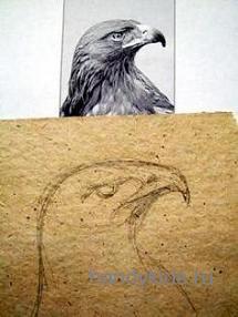 Рисуем  голову орла
