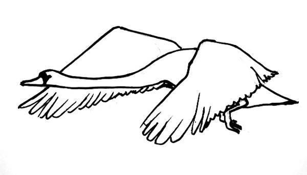 Рисунок Лебедь летит