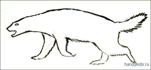 Медоед рисунок