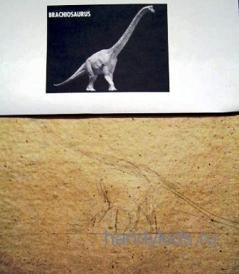 Как рисовать брахиозавра