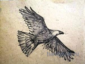 Орёл в полёте