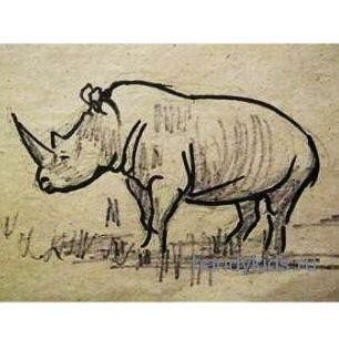 Рисунок Носорог -13