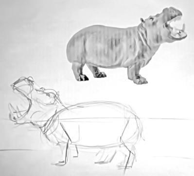 Как нарисовать бегемота