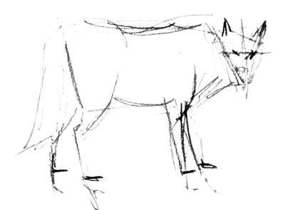 Карандашный эскиз волка -3