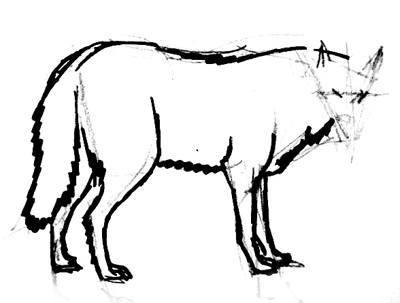 Нарисуем серого волка