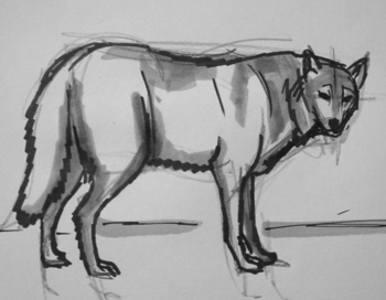 Серый волк рисунок