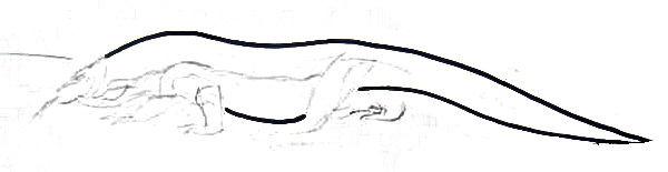 Рисуем комодского дракона