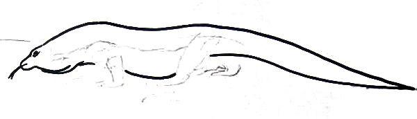 рисуем комодского варана