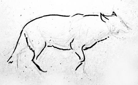 Поэтапный рисунок -волк