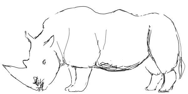 Рисунок Носорог -7