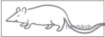 Раскраска Мышка