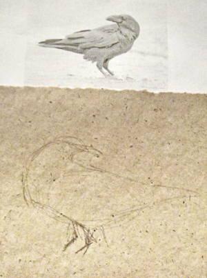 Как нарисовать ворона