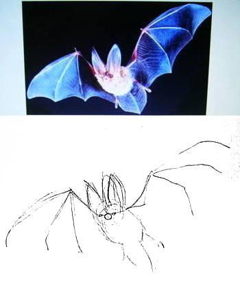 как нарисовать летучую мышь