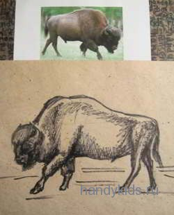 Как нарисовать зубра