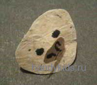 Голова летучей мыши